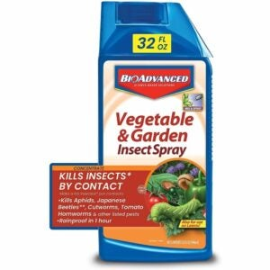 The Best Insecticide for Vegetable Garden Option: BioAdvanced Bayer Advanced Insect Spray