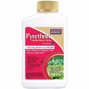 The Best Insecticide for Vegetable Garden Option: Bonide (BND857) Pyrethrin Garden Insect Spray