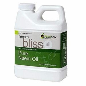 The Best Insecticide for Vegetable Garden Option: Neem Bliss Organic 100% Cold Pressed Neem Seed Oil