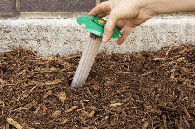 The Best Termite Treament Option