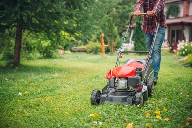 best-self-propelled-lawn-mower