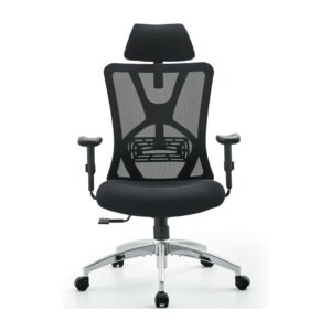 Best Ergonomic Chair Ticova
