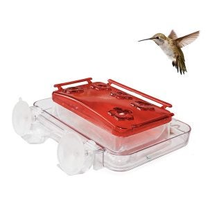 Best Hummingbird Feeder Options: Sherwoodbase Cuboid - Insect-Proof Window Hummingbird Feeder