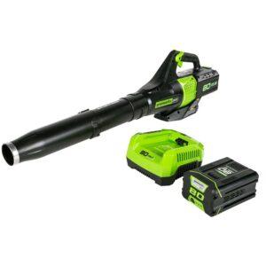 Best Battery Powered Leaf Blower Greenworks