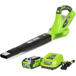Best Battery Powered Leaf Blower Greenworks40V