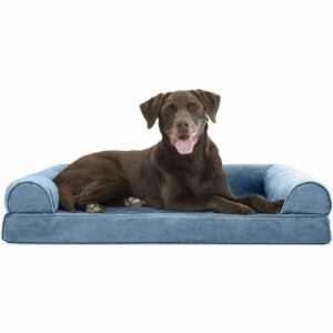 The Best Dog Beds Option: Furhaven Pet - Orthopedic Sofa-Style Couch