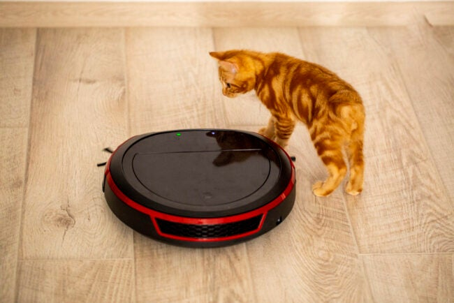 The Best Vacuum For Pet Hair Options