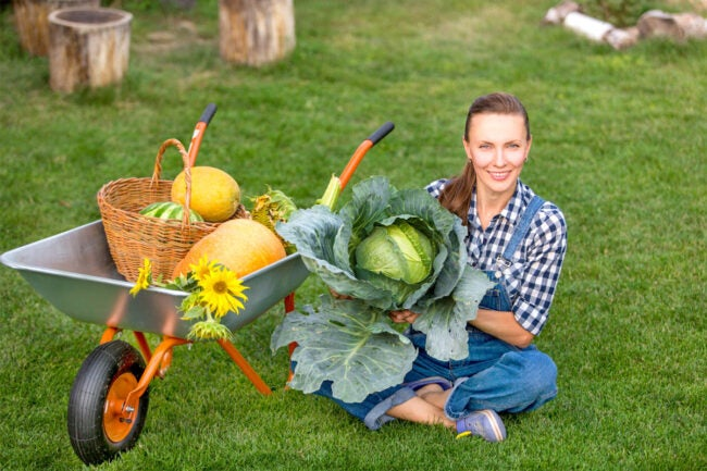 The Best Garden Carts for Quick and Easy Transport