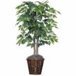 The Best Fake Plants Option: Vickerman 4-Feet Artificial Natural Ficus Bush