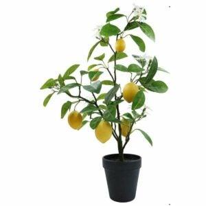 The Best Fake Plants Option: CEWOR 2pcs Artificial Hanging Plants