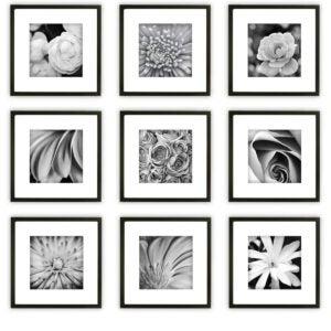 最佳相框选项:画廊完美画廊墙壁套件方形照片
