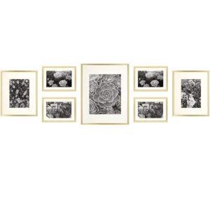 最佳的相框选项:金色州艺术,金金属墙照片框架集合