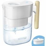The Best Water Pitcher Option: Waterdrop Chubby 10-Cup Water Filter Pitcher