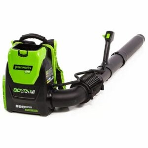 Best Backpack Leafblower