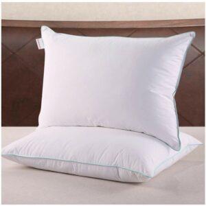 Best Down Pillows Homelike