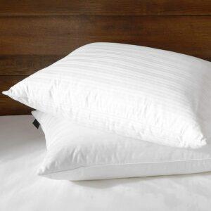 Best Down Pillows downluxe