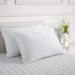 Best Down Pillows puredown
