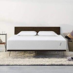 最好的坚固床垫选择:丛&针-原始自适应泡沫床垫