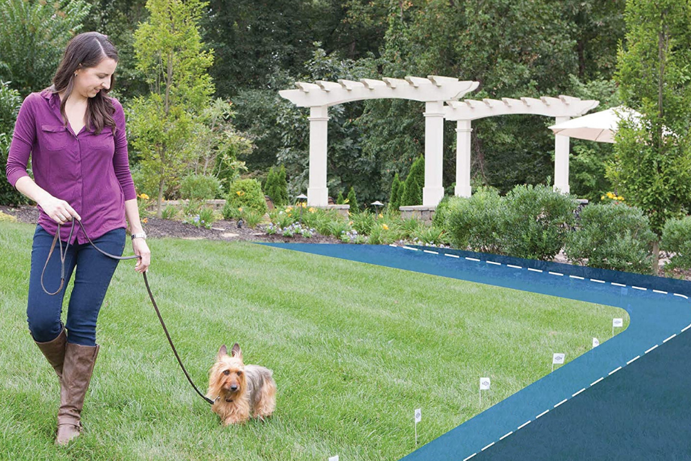 Best Invisible Dog Fences For The Yard, Above Ground Wireless Fence For Dogs