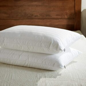 Best Pillow For Side Sleepers downluxe