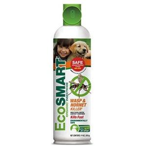 最佳黄蜂喷雾剂:EcoSMART有机黄蜂和黄蜂杀手