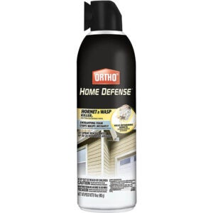 最好的WASP喷雾选项:Ortho家庭防御大黄蜂和黄蜂杀手