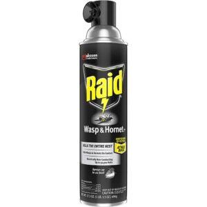 最好的WASP喷雾选项:RAID WASP和大黄蜂杀手,17.5盎司