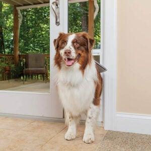最好的狗门选项:Petsafe自由铝合金露台面板滑动玻璃