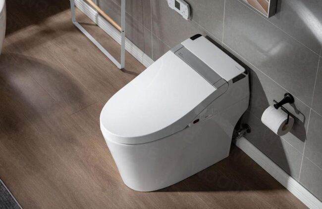 The Best Dual Flush Toilet Options