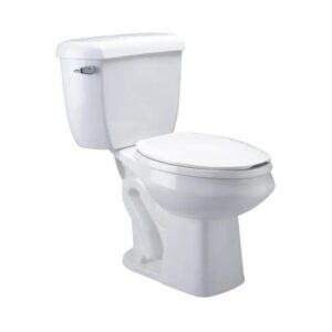 The Best Dual Flush Toilet Option: Zurn White WaterSense Dual Flush Toilet