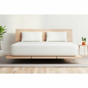 The Mattress Black Friday Option: Vaya