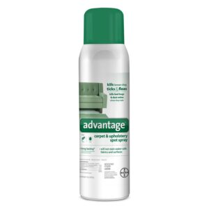 The Best Flea Spray Option: Advantage Carpet and Upholstery Spot Spray
