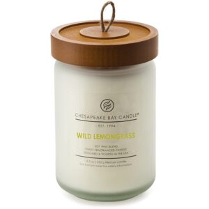 The Best Home Fragrance Option: Chesapeake Bay Candle Scented Candle, Wild Lemongrass