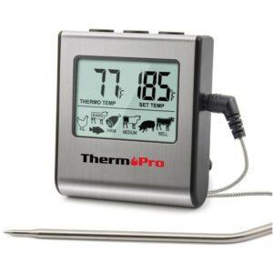 Best Meat Thermometer ThermoPro