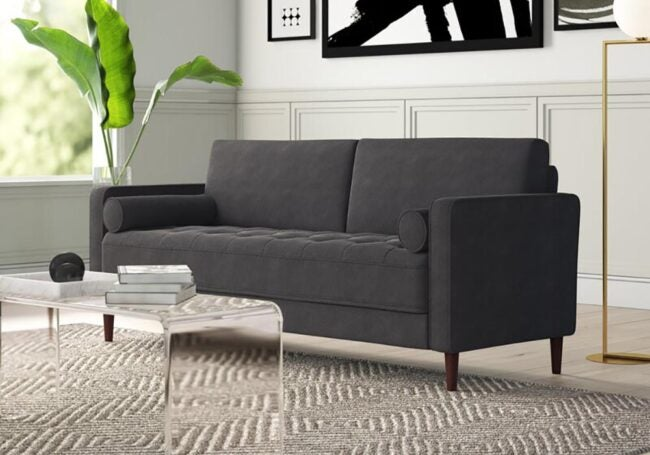 The Best Couch for Dog Options