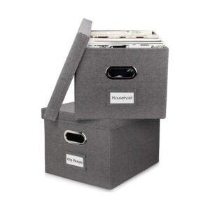 最好的文件柜选项:Zicoto美学文件管理器盒组2