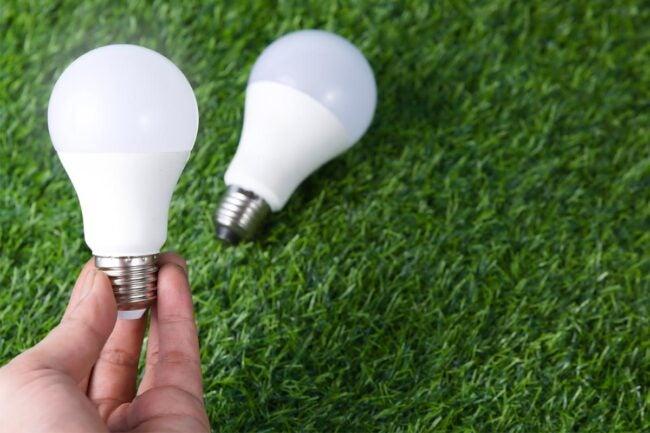 The Best Smart Light Bulb Options