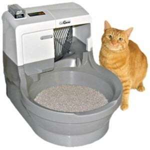 The Best Litter Box Option: CatGenie Self Washing Self Flushing Cat Box
