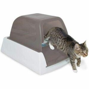 最佳猫砂盒选择:PetSafe无勺超自洁猫砂盒