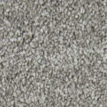 Best Carpet for Pets Options: Lifeproof Playful Moments II Textured Carpet