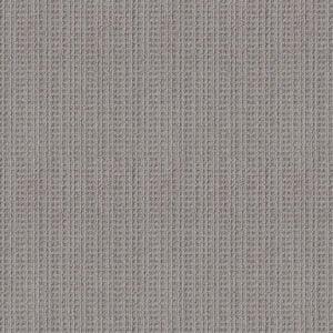 Best Carpet for Pets Options: Shaw Floors Subtle Aura