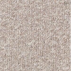 Best Carpet for Pets Options: TrafficMaster Tidewater Carpet