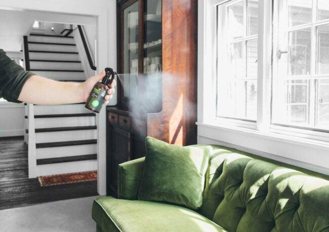 Best Air Freshener Options