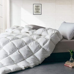 Best Bedding Options: APSMILE Luxurious All Seasons European Goose Down Comforter