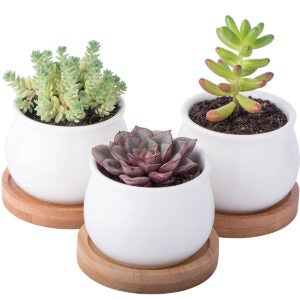 Best Desk Accessories Options: StarPack Premium 3 Piece Mini White