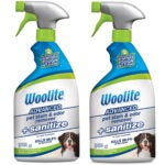 Best Pet Stain Remover Options: Woolite Advanced Pet Stain