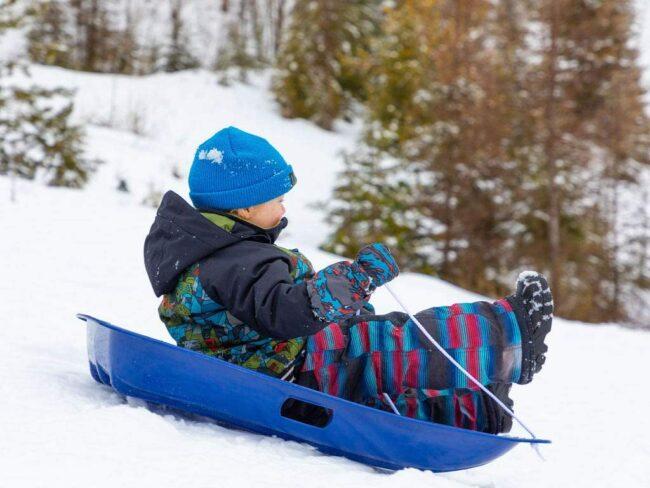 最好的雪橇选项