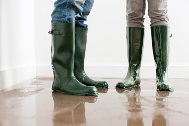 flood insurance options