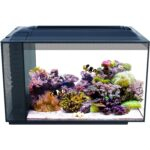 The Best Fish Tanks Option: Fluval Sea Evo Saltwater Fish Tank Aquarium Kit