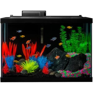 最好的鱼缸选项:用LED的胶水水族箱套装鱼缸
